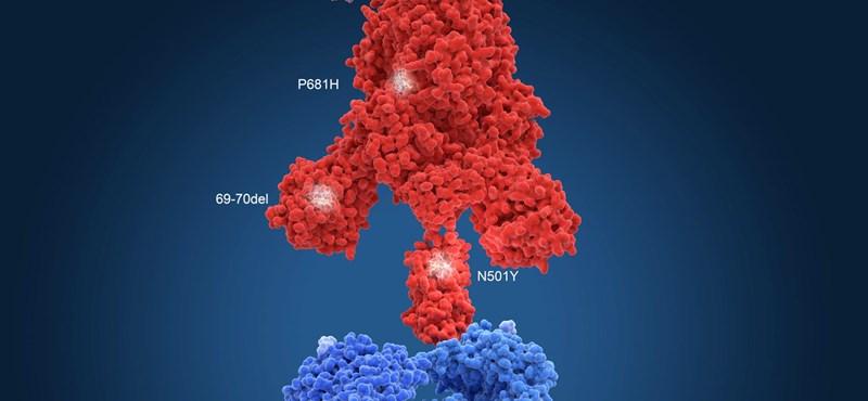 """A franciák szerint """"nagyon nyugtalanító"""" a britektől indult koronavírus-mutáció"""