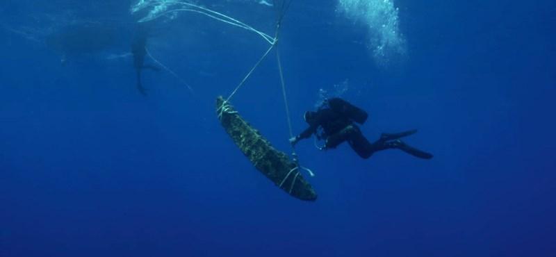 Kolosszális hajóhoz tartozhatott a most megtalált, 400 kilós ókori horgonydarab