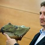 Szenzációs magyar dinoszaurusz-lelet