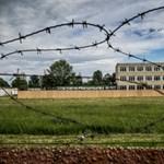 Fél év a menekültügy siralomházában
