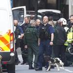 Londoni merénylet: a rendőrök is meglőttek véletlenül egy civilt
