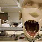 Komoly oktatóhiány van a horvát orvosi egyetemeken