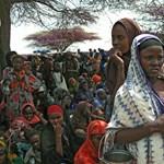 Egyre több a kolerás beteg Afrikában