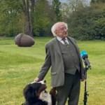 Élő tévéinterjút adott az ír elnök, de a kutyája ennek a legkevésbé sem örült