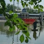 Iszonyatos bűz van a vizes vb városligeti helyszínén