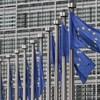 Vakvezető pónit akkreditáltak az Európai Parlamentben