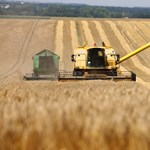 Földtörvény: Az osztrák vircsaftnak sose lesz vége