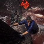Vérfürdőtől a szusibárig - Nagyítás-fotógaléria