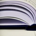 Megvannak a részletek a szakképzés átalakításáról, újabb diáktüntetést szerveznek: ezek a hét hírei