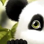 Így tehetünk animált pandát Androidos telefonunkra