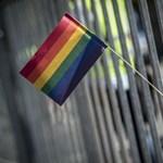 Felfüggesztett börtönt kapott a pesti Pride-ot megzavaró férfi