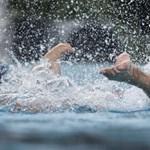 Ceglédi: Igen, jobb lett volna a vizes vébé nélkül