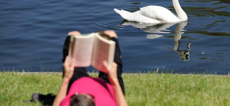 Feldmár, Törőcsik, Salinger: 11 könyv, amit ne hagyjunk ki