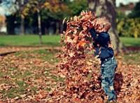 Hogyan neveljünk lelkileg egészséges gyerekeket? Figyeljünk a siker hangjára!