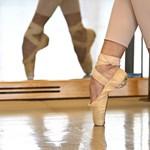 Nem mentek a balettba ugrálni: nyolcmillió euró veszteség