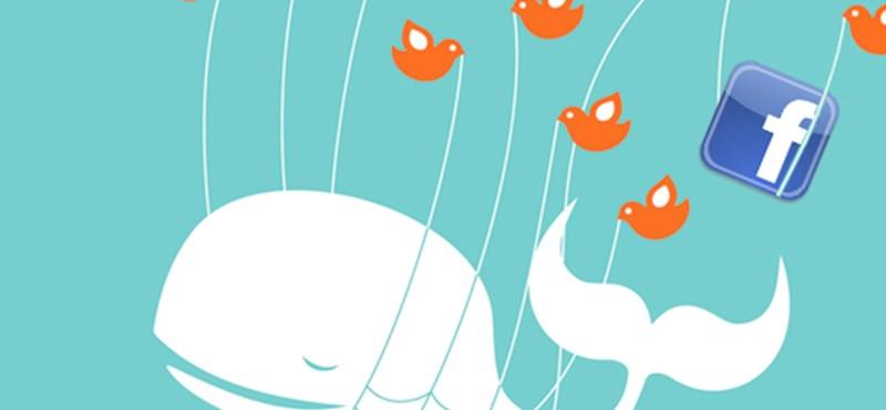 Akadozik a Facebook, leállt a Twitter