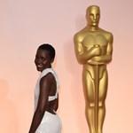 Meglehet az Oscar-gála után ellopott 40 milliós ruhaköltemény
