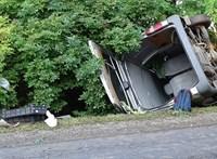 Fának csapódott egy kisbusz Kunszentmártonnál - fotók