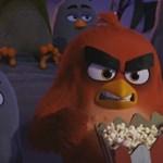 Még szórakoztatóbb előzetes jött az Angry Birds-mozihoz