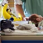 Koraszülöttek halála: nem találtak fertőzésre, szakmai mulasztásra utaló jeleket