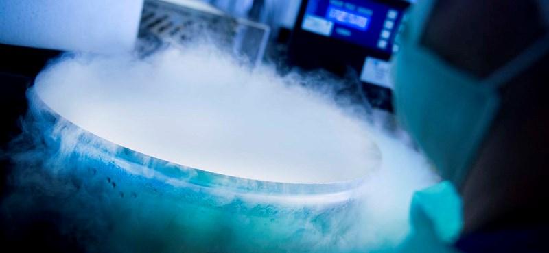 Forradalmi szívműtétet hajtottak végre Japánban, más sejtekké átalakulni képes őssejtekkel
