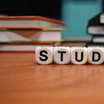 """Különleges """"alternatív"""" iskola működik Budapesten, ezentúl középiskolai része is lesz"""