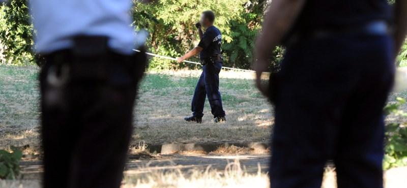 Pécsi gyilkosság: egy külföldi diák is gyanúba keveredett