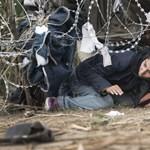 Bayer Zsolt szerint a németek nagyobb bűnt követnek el a menekültek befogadásával, mint korábban a holokauszttal
