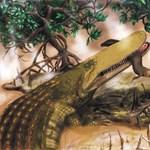 Kép: hosszú pofával és bőrpajzzsal kerestek párt az első krokodilok