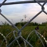 Scheppele: Orbán rendőrállamot épít, a menekültválság csak apropó