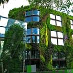 Függőleges zöld kertek Párizsban - kéne?