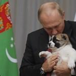 Azonosították Putyin eltitkolt lányát
