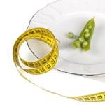Ketogén diéta a veseelégtelenség ellen