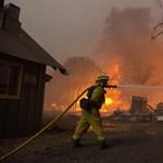 79-re emelkedett a kaliforniai tűzvész halálos áldozatainak száma