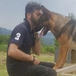 Megmérgezték Káoszt, a hős olasz mentőkutyát