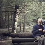 Nyugdíjválság Magyarországon? Infografika