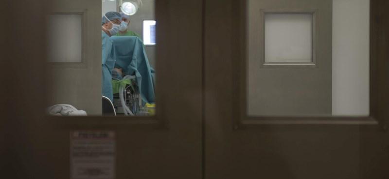 Elvégezték itthon az első gyermek-tüdőátültetést