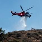 Egy darázsfészek miatt égett le tavaly fél Kalifornia
