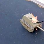 Halloween jelmez: kedvencünkből akár könyörtelen tank is válhat (videó)