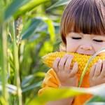 Túl kevés zöldséget és gyümölcsöt esznek a magyar gyerekek