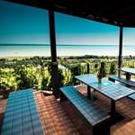 A borász, akinek volt egymilliárdja a Hableány étterem felújítására