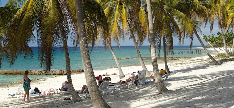 Hatósági áras lett a banán, ananász és a papaja is Kubában