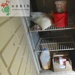 Csak idén 560 tonna élelmiszert vont ki a Nébih a forgalomból