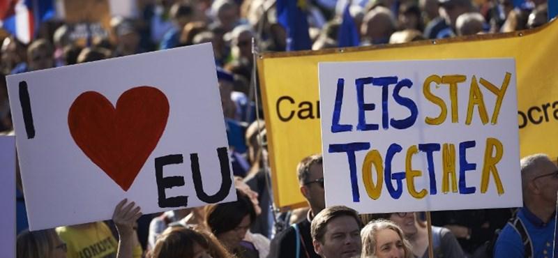 Kilépett a brit kormányból és új Brexit-népszavazást követel Boris Johnson öccse