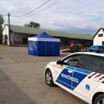 Tolató munkagép gázolt halálra egy embert Tolna megyében
