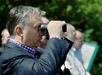 Növelte táborát a Fidesz