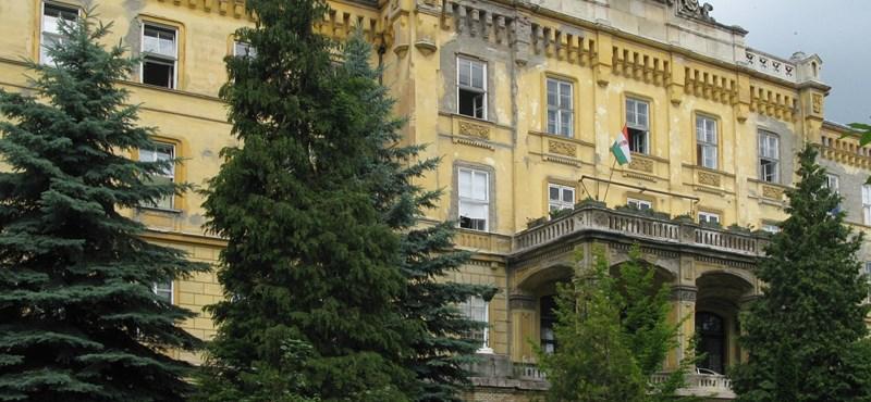 Minden negyedik magyarnak van valamilyen mentális problémája
