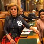 Kocsis Máté lealázta a Kövér László miatt tiltakozó Kunhalmi Ágnest