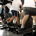 Elhízásjárvány fenyegeti Európát