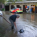 Durva vihar: Dőltek a fák és a kémények országszerte